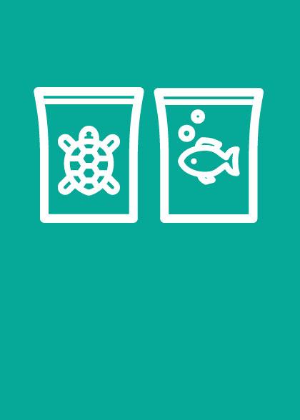 Cibo per pesci e tartarughe